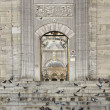 Yeni Cami Mosque Main Gate — Stock Photo