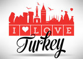 Turkey's Landmark Design — Stock Vector