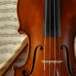Violin and Bow — Foto de Stock