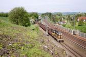Local cargo train in the Czech Republic — Stock Photo