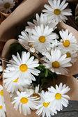 Beautiful flowers in flower shop — Stock Photo