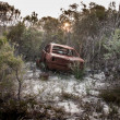 Abandon car in forest — Stock Photo