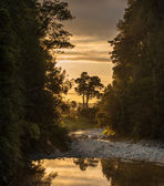 ландшафт новой зеландии — Стоковое фото