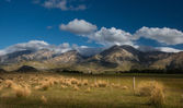 Landscape of New Zealand — Photo