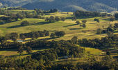 Landscape view of Blue Mountains national park. — Stock Photo
