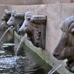 Fountain stone lion in the Garden — Stock Photo #32288505
