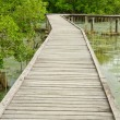 Wooden walkway in Mangrove forest at Petchabuti, Thailand — Stock Photo
