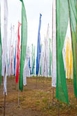 Colorful Mantra flag field in Darjeeling, India — Stock Photo