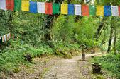 Walkway with Mantra flag at Khachoedpalri lake — Stock Photo