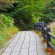 Stock Photo: Walkway in at Unzen mountain at Obama, Japan