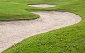 Kum ile yeşil alan — Stok fotoğraf