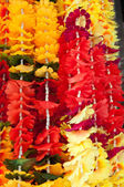 Il gruppo di fiori in panno — Foto Stock