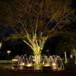The beatiful fountain with decorated light at night time — Stock Photo