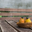 The couple of ceramic birds for decoration — Stock Photo #49508359