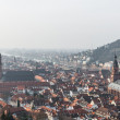 The cityscape of Heidelberg city with River Neckar, Church of th — Stock Photo #51002975