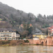 The houses on the mountain near the old bridge in Heidelberg — Stock Photo #51005981