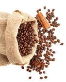 Coffee beans, cinnamon, anise — Stock Photo