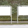 Image of blank advertising spaces near shopping center — Stock Photo