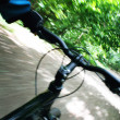 Stock Photo: Riding mountain bike in forest