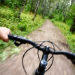 Riding mountain bike in forest — Stock Photo #29723767