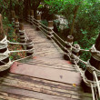 Image of stairway in jungle — Stock Photo