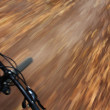 Riding mountain bike in forest — Stock Photo #29725585