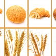 Set of bread and cereals isolated on white — Stock Photo #29725587
