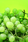 Image of bright green background with wet grape — Stock Photo