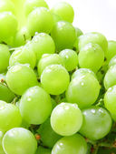 Image of green grape background with water drops — Stock Photo