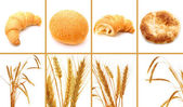 Set of bread and cereals isolated on white — Stock Photo