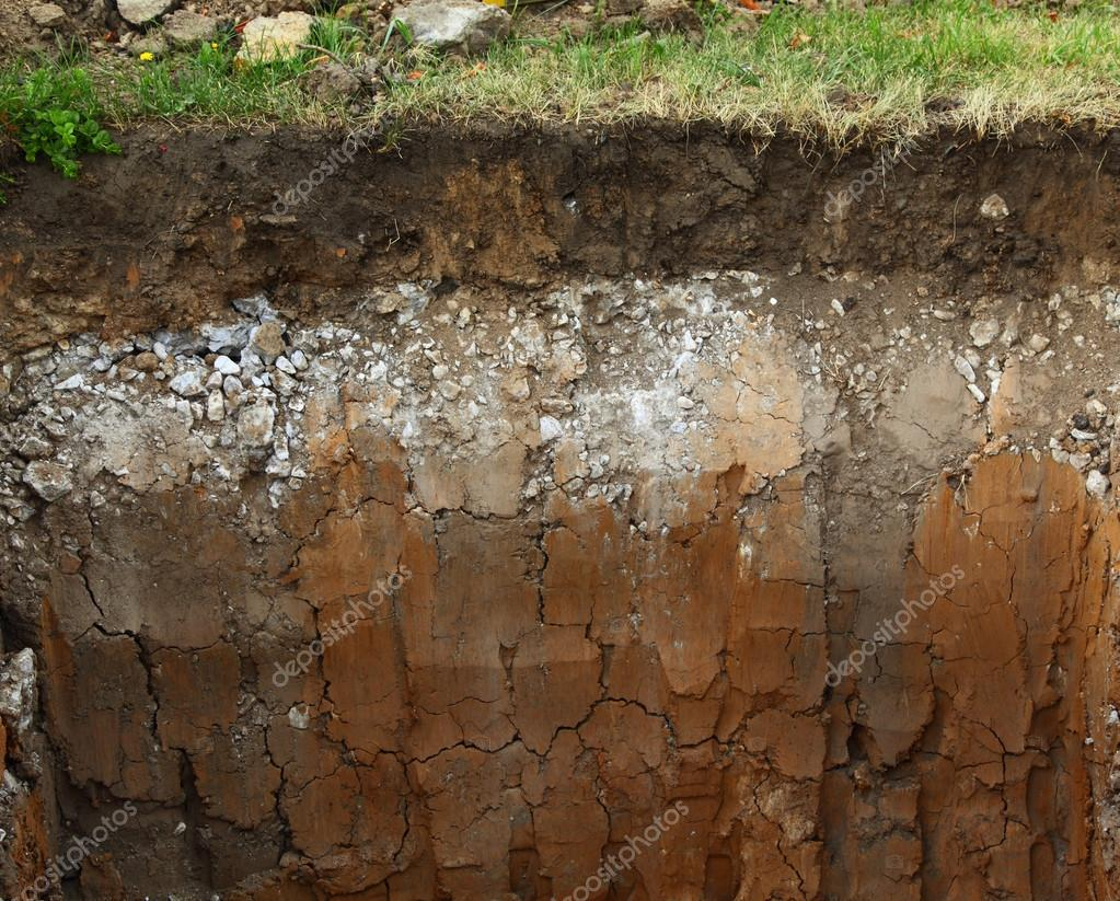 Image of underground soil layers stock photo strixcode for Where can i find soil