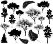 Ağaçlar — Stok Vektör