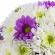 Stock Photo: Spring Flower bouquet