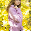 Portrait of a beautiful girl on a background of autumn park — Stock Photo #34140577