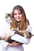 Young gir lveterinarian in a white robe with kittens — Stock Photo