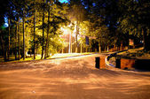 Night city park — Stock Photo
