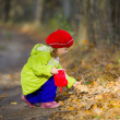 Little girl collects autumn leaves — Stock Photo