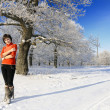 Girl walking in winter oak forest — Stock Photo