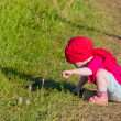 Child on walk in the field — Stock Photo