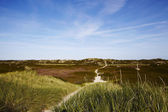 Sylt (Germany) - Sand dune at Puan Klent — Stock Photo