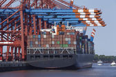 Container gantry crane and containership — Stock Photo