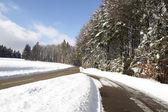 Zimowy pejzaż z ulicy — Zdjęcie stockowe