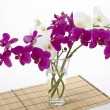 Stock Photo: Bouquet of orchids