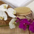 Stock Photo: Wellness - Bath brush, rolled towels and orchids