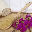 Wellness - Bath brush, rolled towels and orchids — Stock Photo #39319695