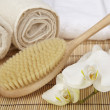 Wellness - Bath brush, rolled towels and orchids — Stock Photo #39319889