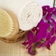 Stock Photo: Bath brush and rolled towel in basket