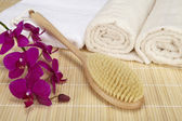 Wellness - bath brush, folded and rolled towels — Stock Photo