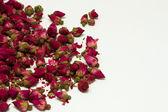 Wizened roses 1 — Stock Photo