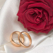 Two rings — Stock Photo